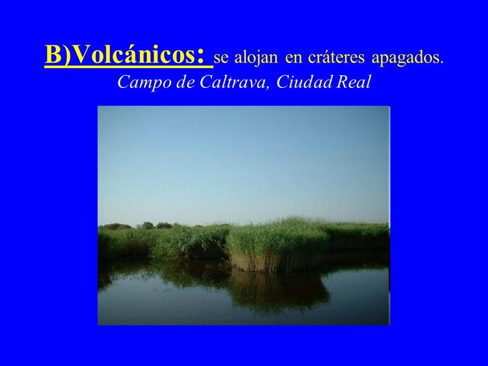 B)Volcánicos : se alojan en cráteres apagados. Campo de Caltrava, Ciudad Real