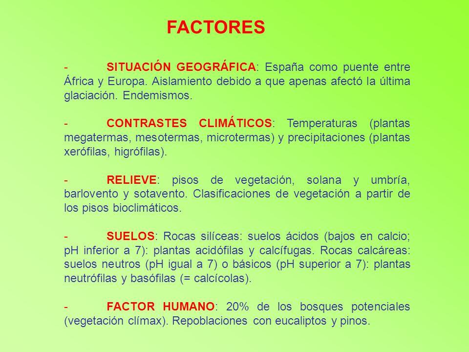 -SITUACIÓN GEOGRÁFICA: España como puente entre África y Europa. Aislamiento debido a que apenas afectó la última glaciación. Endemismos. -CONTRASTES