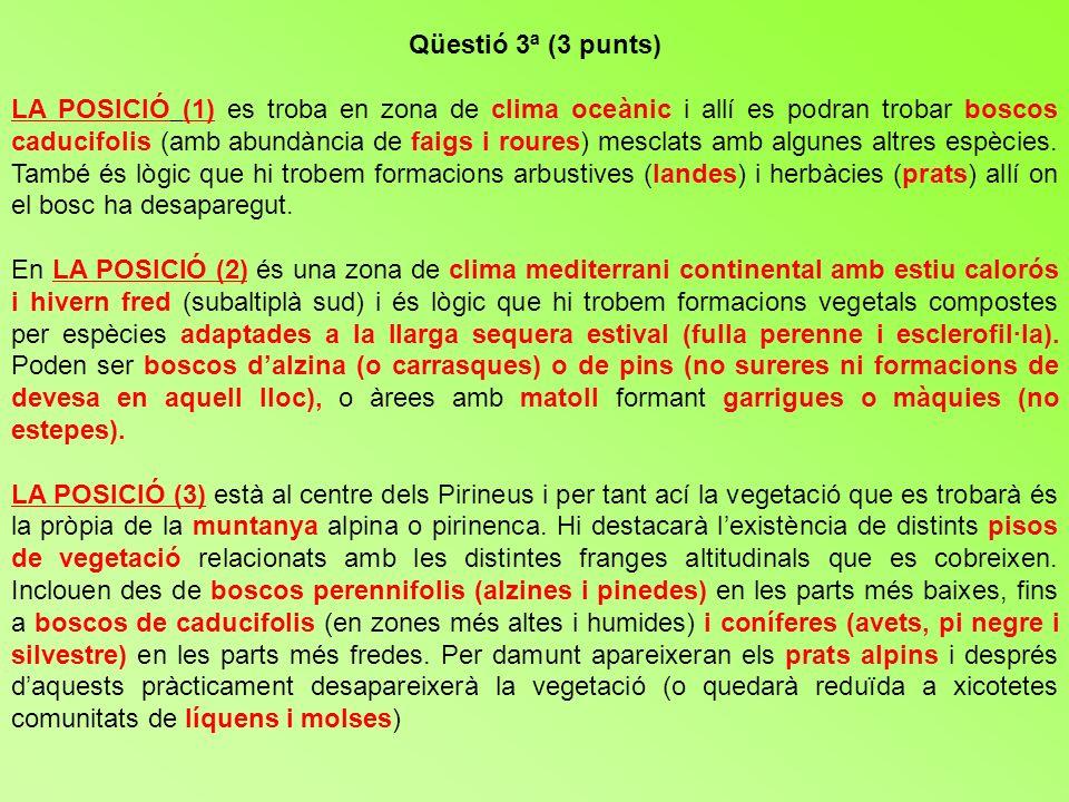 Qüestió 3ª (3 punts) LA POSICIÓ (1) es troba en zona de clima oceànic i allí es podran trobar boscos caducifolis (amb abundància de faigs i roures) me