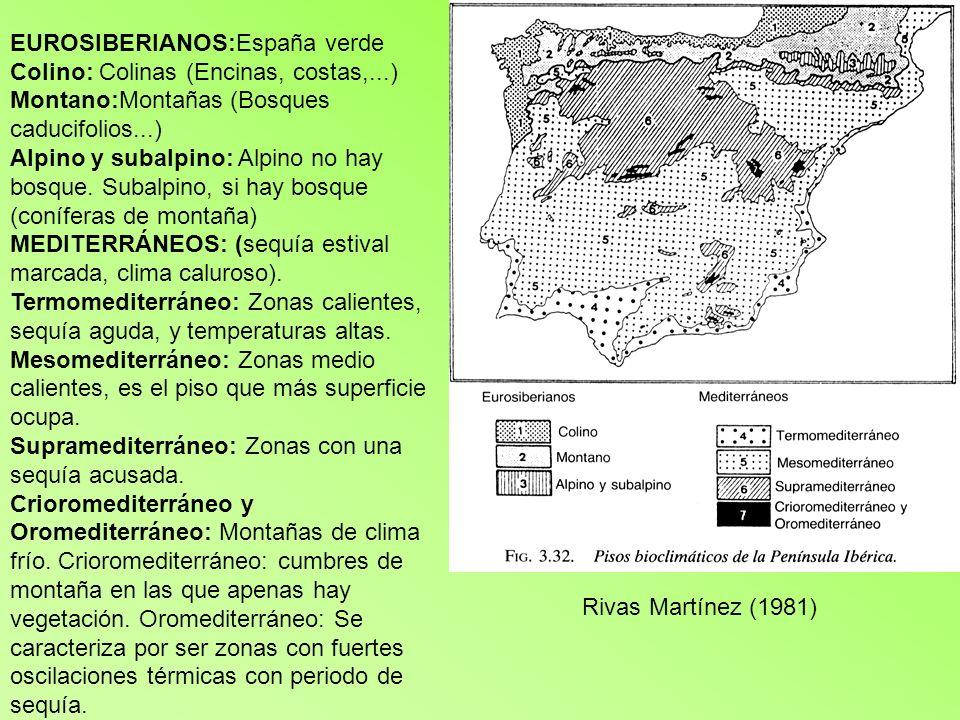 Qüestió 3ª (3 punts) LA POSICIÓ (1) es troba en zona de clima oceànic i allí es podran trobar boscos caducifolis (amb abundància de faigs i roures) mesclats amb algunes altres espècies.