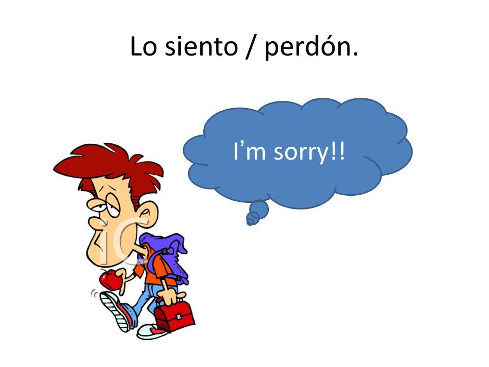 Lo siento / perdón. Im sorry!!