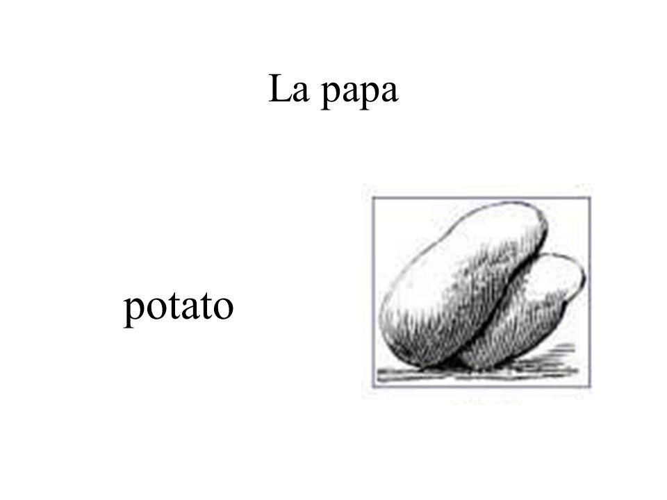 La papa potato