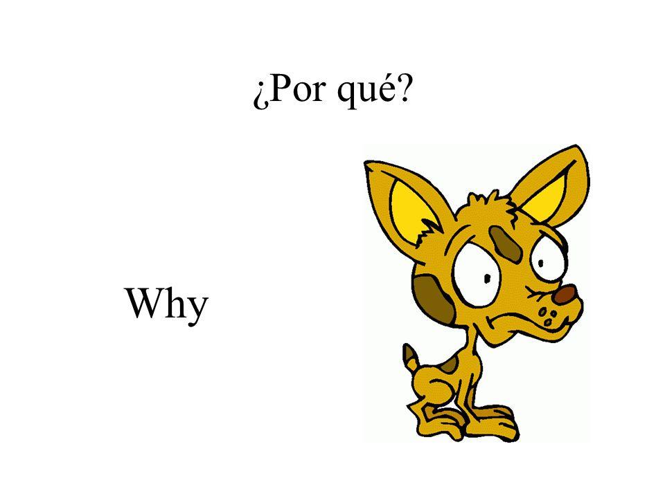 ¿Por qué Why