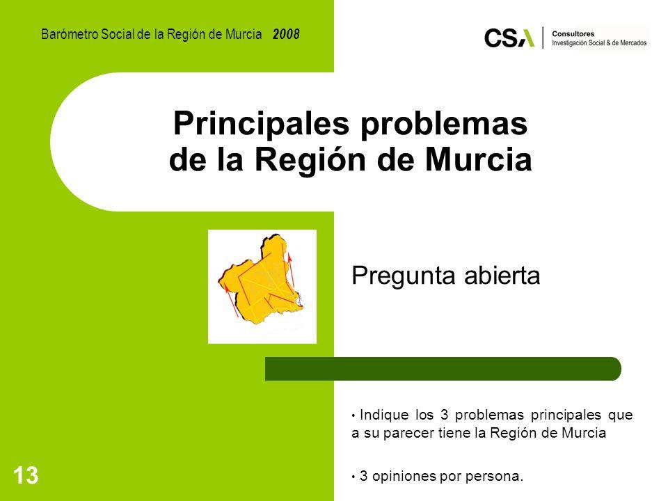 13 Principales problemas de la Región de Murcia Pregunta abierta Indique los 3 problemas principales que a su parecer tiene la Región de Murcia 3 opiniones por persona.