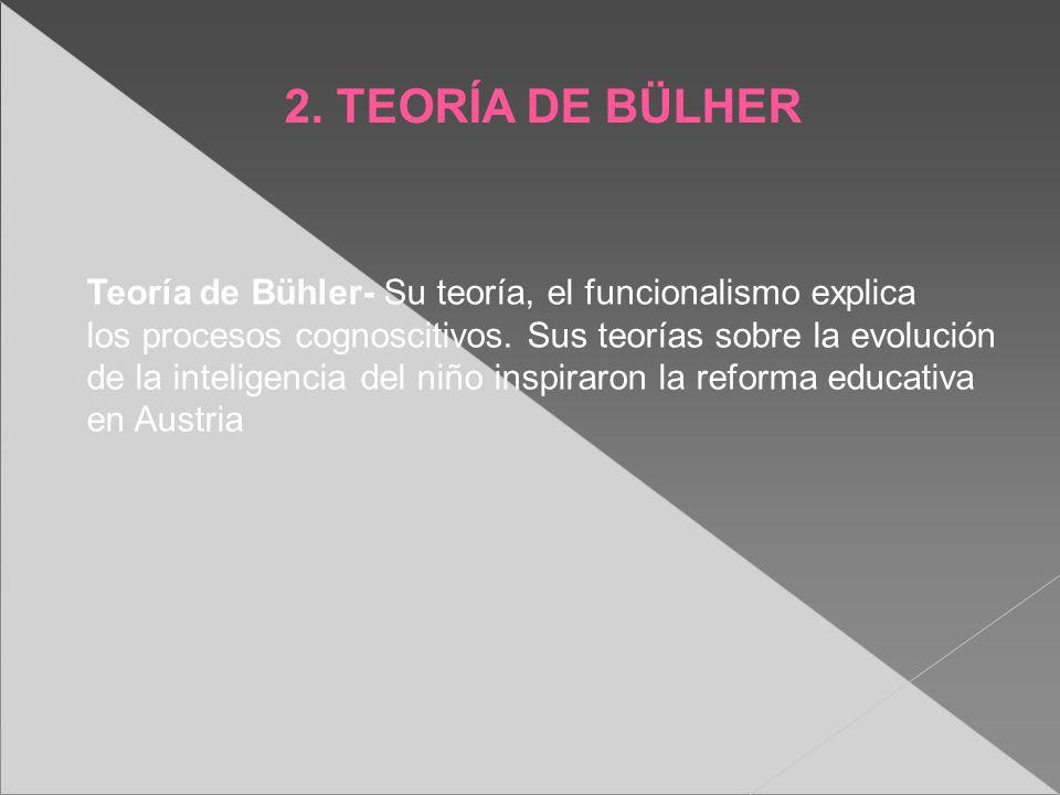 2. TEORÍA DE BÜLHER Teoría de Bühler- Su teoría, el funcionalismo explica los procesos cognoscitivos. Sus teorías sobre la evolución de la inteligenci