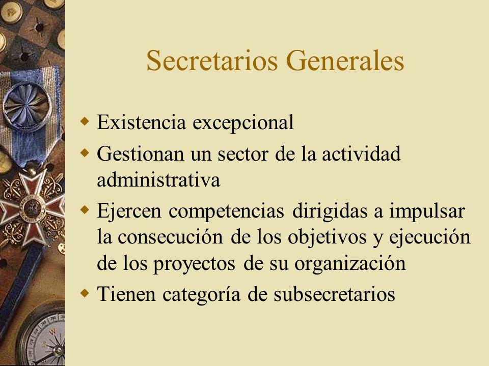 Secretarios Generales Existencia excepcional Gestionan un sector de la actividad administrativa Ejercen competencias dirigidas a impulsar la consecuci