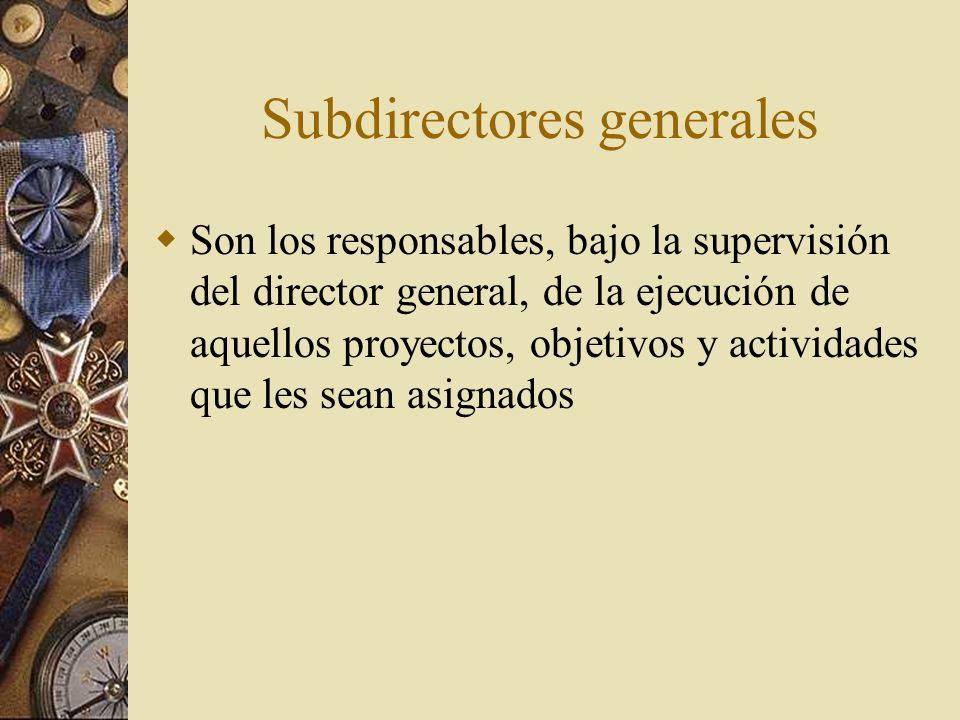 Subdirectores generales Son los responsables, bajo la supervisión del director general, de la ejecución de aquellos proyectos, objetivos y actividades