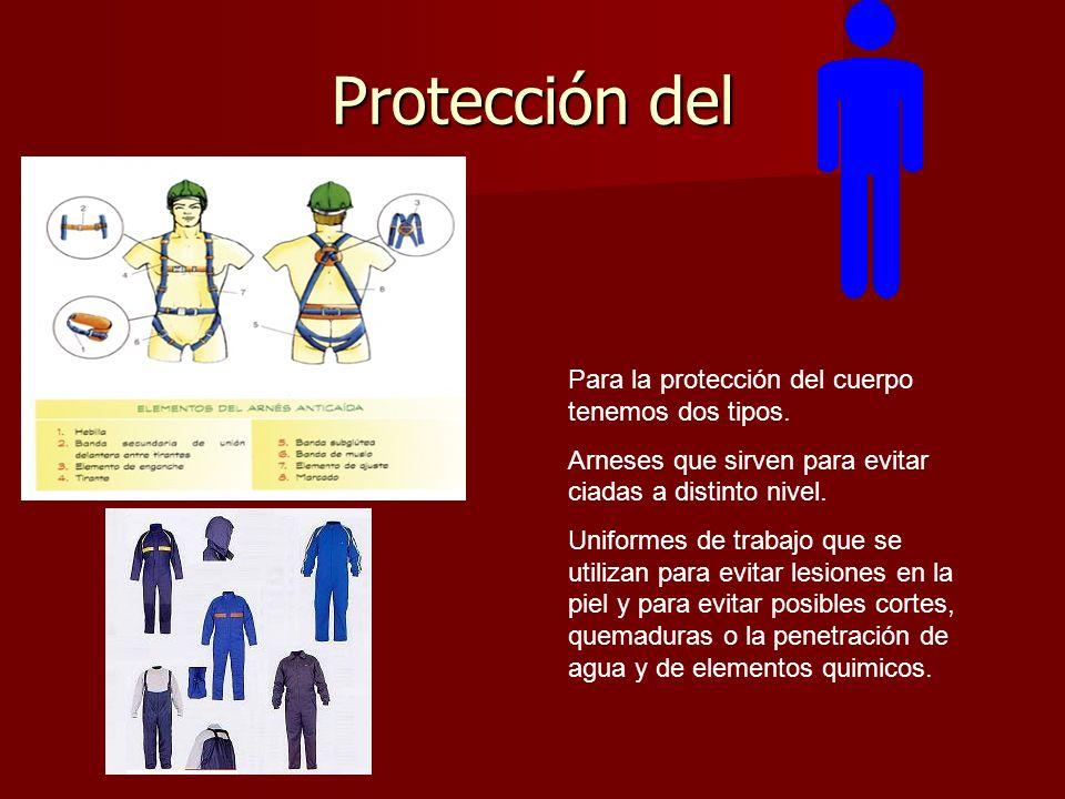 Protección del Para la protección del cuerpo tenemos dos tipos.