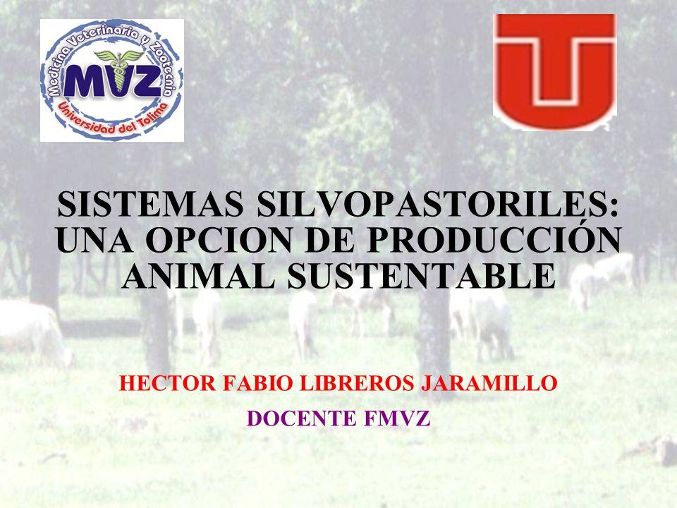 SISTEMAS SILVOPASTORILES: UNA OPCION DE PRODUCCIÓN ANIMAL SUSTENTABLE HECTOR FABIO LIBREROS JARAMILLO DOCENTE FMVZ