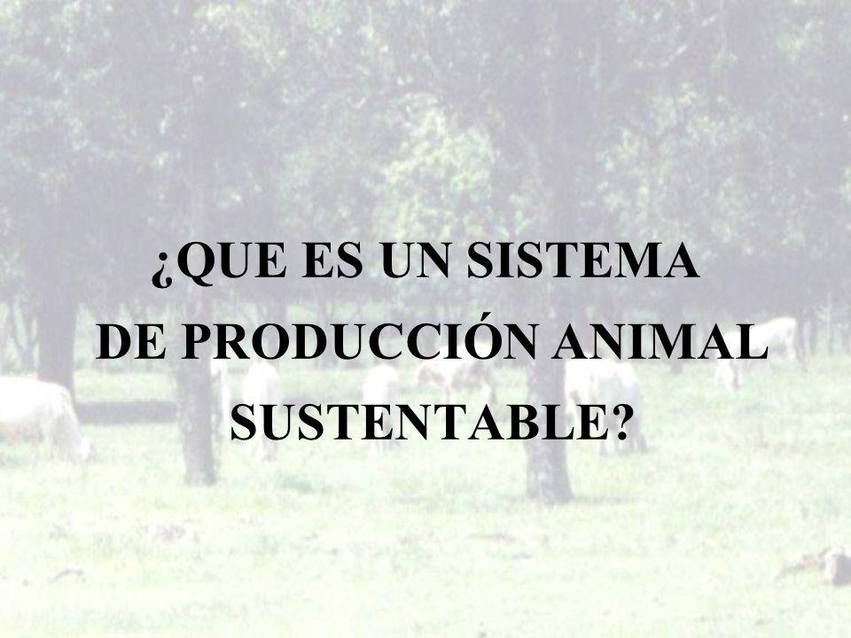 ¿QUE ES UN SISTEMA DE PRODUCCIÓN ANIMAL SUSTENTABLE?