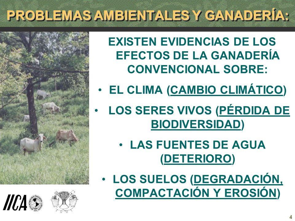 4 PROBLEMAS AMBIENTALES Y GANADERÍA: EXISTEN EVIDENCIAS DE LOS EFECTOS DE LA GANADERÍA CONVENCIONAL SOBRE: EL CLIMA (CAMBIO CLIMÁTICO) LOS SERES VIVOS