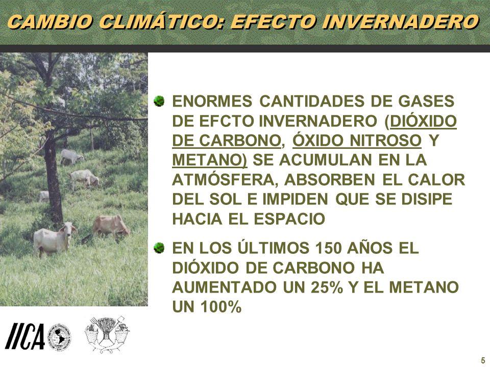 5 CAMBIO CLIMÁTICO: EFECTO INVERNADERO ENORMES CANTIDADES DE GASES DE EFCTO INVERNADERO (DIÓXIDO DE CARBONO, ÓXIDO NITROSO Y METANO) SE ACUMULAN EN LA