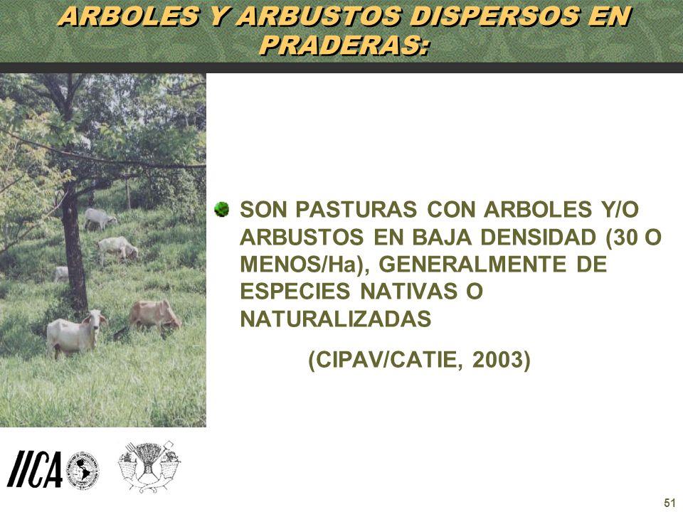 51 ARBOLES Y ARBUSTOS DISPERSOS EN PRADERAS: SON PASTURAS CON ARBOLES Y/O ARBUSTOS EN BAJA DENSIDAD (30 O MENOS/Ha), GENERALMENTE DE ESPECIES NATIVAS