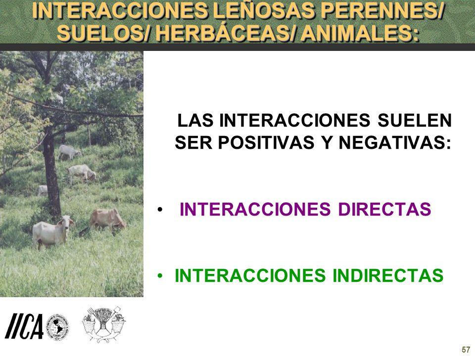 57 INTERACCIONES LEÑOSAS PERENNES/ SUELOS/ HERBÁCEAS/ ANIMALES: LAS INTERACCIONES SUELEN SER POSITIVAS Y NEGATIVAS: INTERACCIONES DIRECTAS INTERACCION