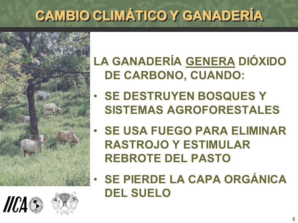6 CAMBIO CLIMÁTICO Y GANADERÍA LA GANADERÍA GENERA DIÓXIDO DE CARBONO, CUANDO: SE DESTRUYEN BOSQUES Y SISTEMAS AGROFORESTALES SE USA FUEGO PARA ELIMIN