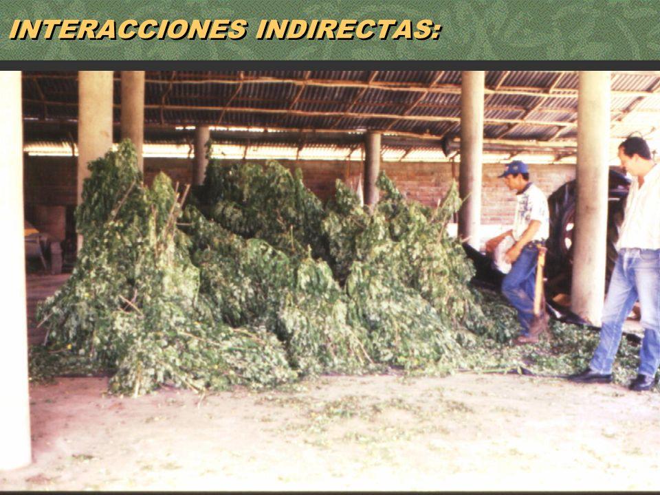 60 INTERACCIONES INDIRECTAS: