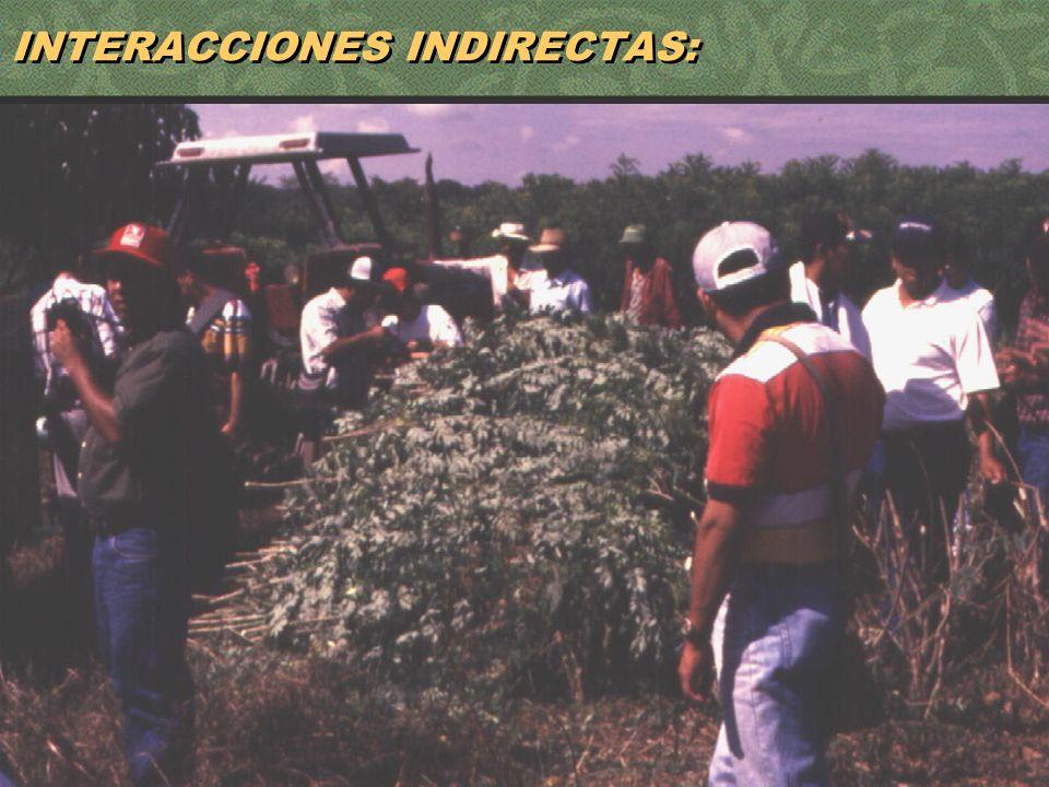 61 INTERACCIONES INDIRECTAS:
