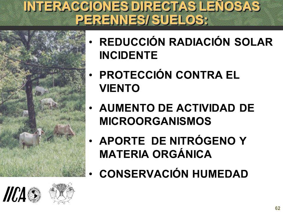 62 INTERACCIONES DIRECTAS LEÑOSAS PERENNES/ SUELOS: REDUCCIÓN RADIACIÓN SOLAR INCIDENTE PROTECCIÓN CONTRA EL VIENTO AUMENTO DE ACTIVIDAD DE MICROORGAN