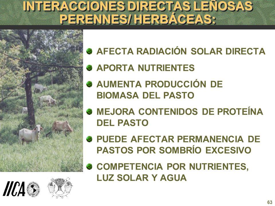 63 INTERACCIONES DIRECTAS LEÑOSAS PERENNES/ HERBÁCEAS: AFECTA RADIACIÓN SOLAR DIRECTA APORTA NUTRIENTES AUMENTA PRODUCCIÓN DE BIOMASA DEL PASTO MEJORA