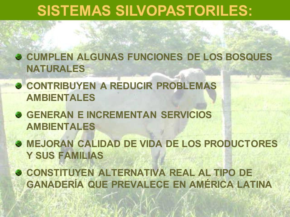 SISTEMAS SILVOPASTORILES: CUMPLEN ALGUNAS FUNCIONES DE LOS BOSQUES NATURALES CONTRIBUYEN A REDUCIR PROBLEMAS AMBIENTALES GENERAN E INCREMENTAN SERVICI