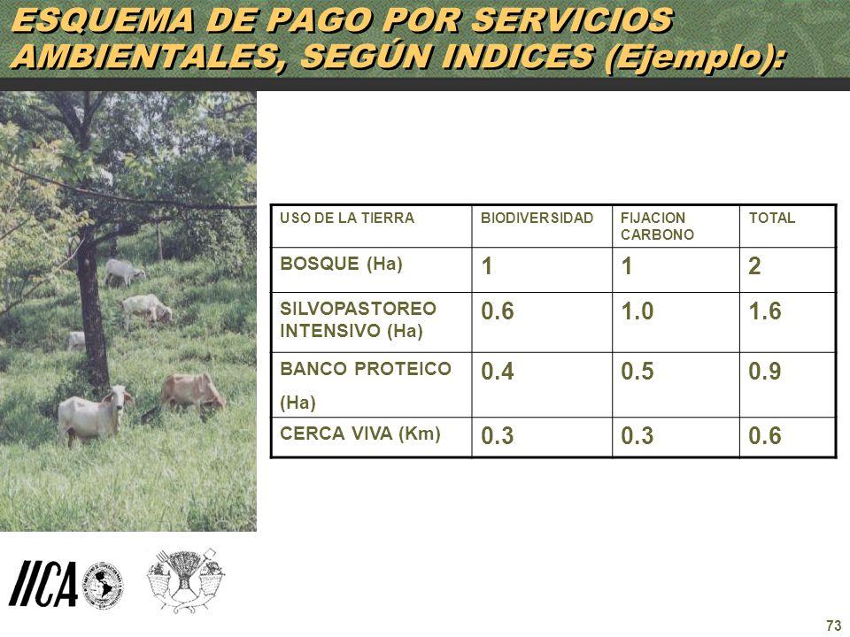 73 ESQUEMA DE PAGO POR SERVICIOS AMBIENTALES, SEGÚN INDICES (Ejemplo): USO DE LA TIERRABIODIVERSIDADFIJACION CARBONO TOTAL BOSQUE (Ha) 112 SILVOPASTOR