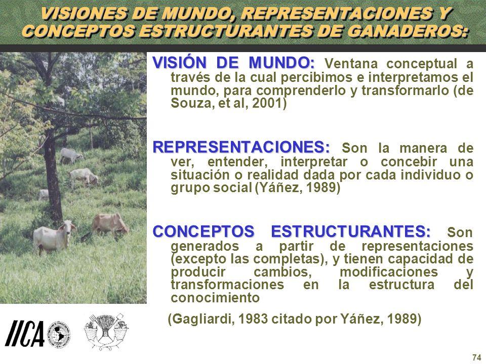74 VISIONES DE MUNDO, REPRESENTACIONES Y CONCEPTOS ESTRUCTURANTES DE GANADEROS: VISIÓN DE MUNDO: VISIÓN DE MUNDO: Ventana conceptual a través de la cu