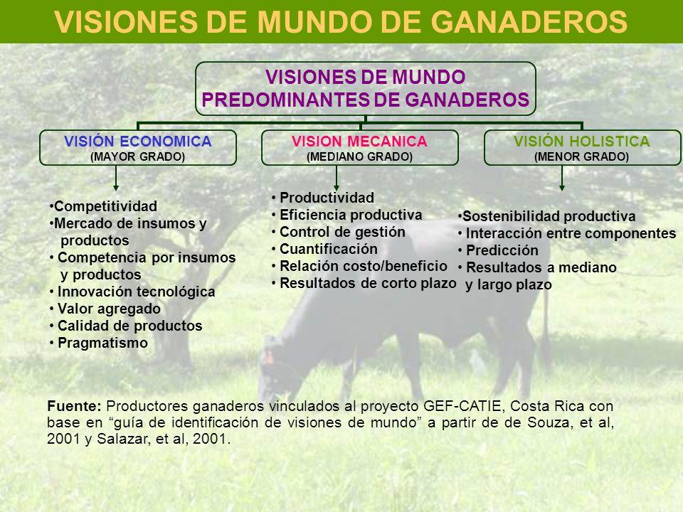 VISIONES DE MUNDO PREDOMINANTES DE GANADEROS VISIÓN ECONOMICA (MAYOR GRADO) Competitividad Mercado de insumos y productos Competencia por insumos y pr