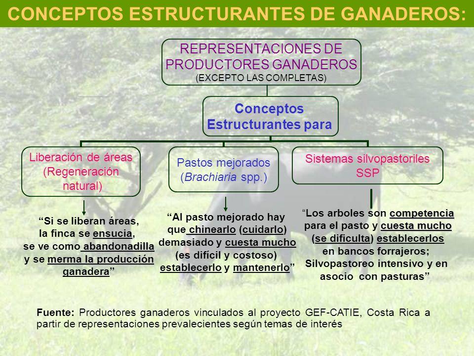 Fuente: Productores ganaderos vinculados al proyecto GEF-CATIE, Costa Rica a partir de representaciones prevalecientes según temas de interés CONCEPTO