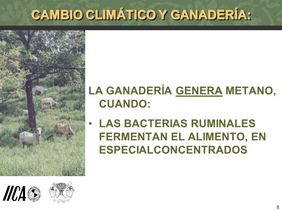 8 CAMBIO CLIMÁTICO Y GANADERÍA: LA GANADERÍA GENERA METANO, CUANDO: LAS BACTERIAS RUMINALES FERMENTAN EL ALIMENTO, EN ESPECIALCONCENTRADOS