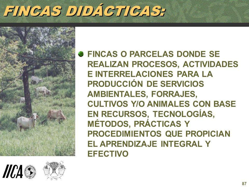 87 FINCAS O PARCELAS DONDE SE REALIZAN PROCESOS, ACTIVIDADES E INTERRELACIONES PARA LA PRODUCCIÓN DE SERVICIOS AMBIENTALES, FORRAJES, CULTIVOS Y/O ANI