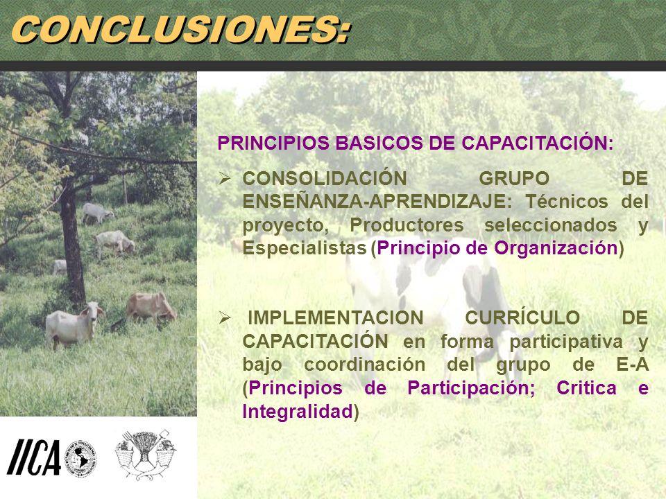 88 CONCLUSIONES: PRINCIPIOS BASICOS DE CAPACITACIÓN: CONSOLIDACIÓN GRUPO DE ENSEÑANZA-APRENDIZAJE: Técnicos del proyecto, Productores seleccionados y