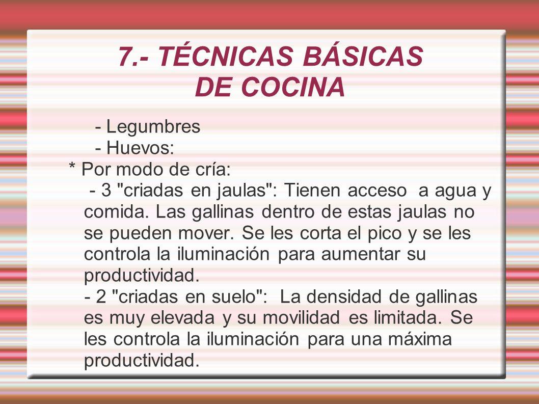 7.- TÉCNICAS BÁSICAS DE COCINA - Legumbres - Huevos: * Por modo de cría: - 3