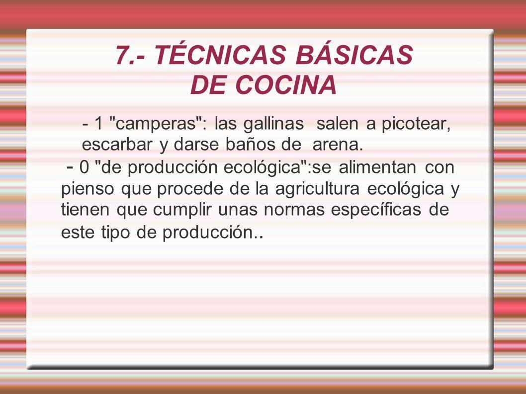 7.- TÉCNICAS BÁSICAS DE COCINA - 1