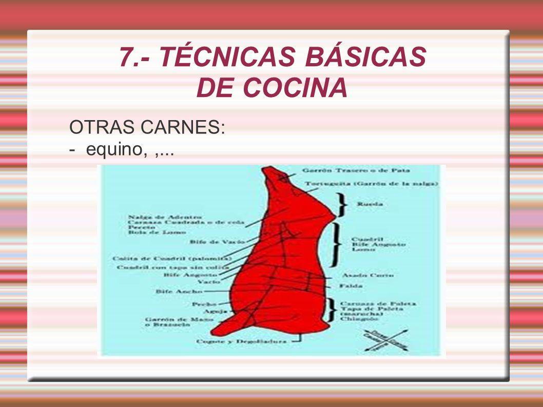7.- TÉCNICAS BÁSICAS DE COCINA OTRAS CARNES: - equino,,...