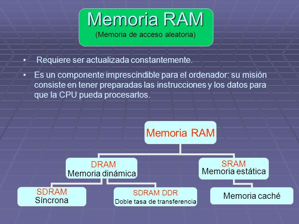 Memoria Memoria real: Chips de memoria Memoria real: Chips de memoria Memoria virtual: Archivos creados en el disco duro a modo de memoria adicional.