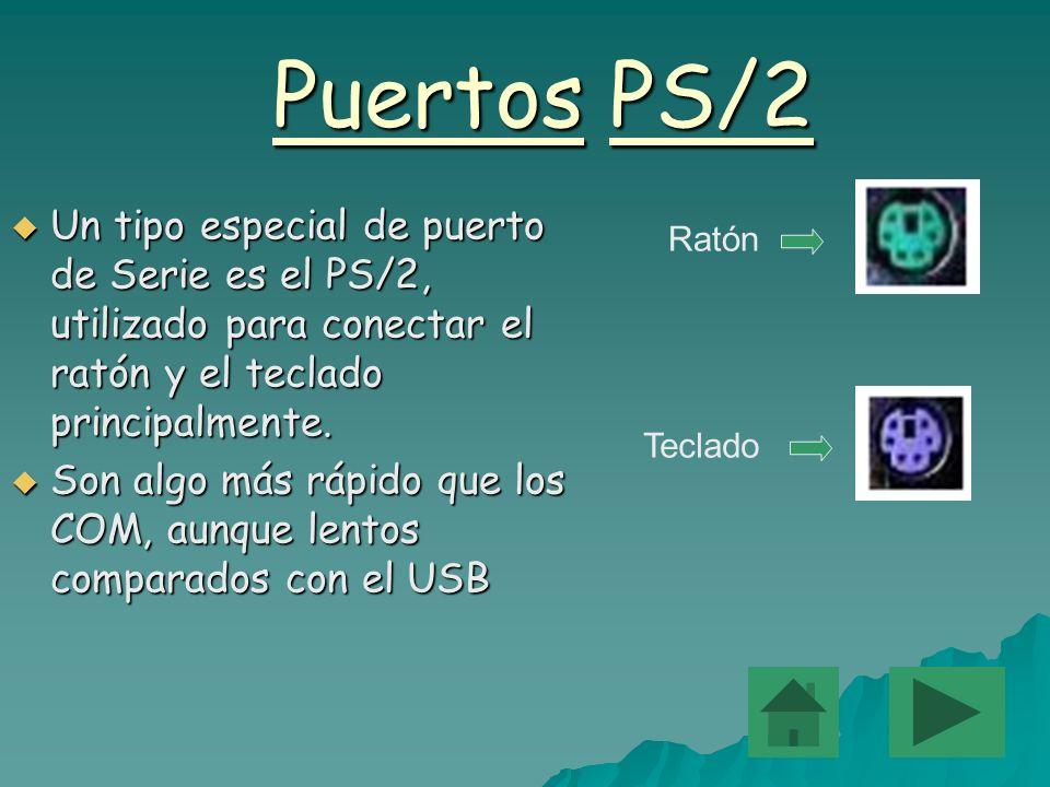 Puertos PS/2 Un tipo especial de puerto de Serie es el PS/2, utilizado para conectar el ratón y el teclado principalmente. Un tipo especial de puerto