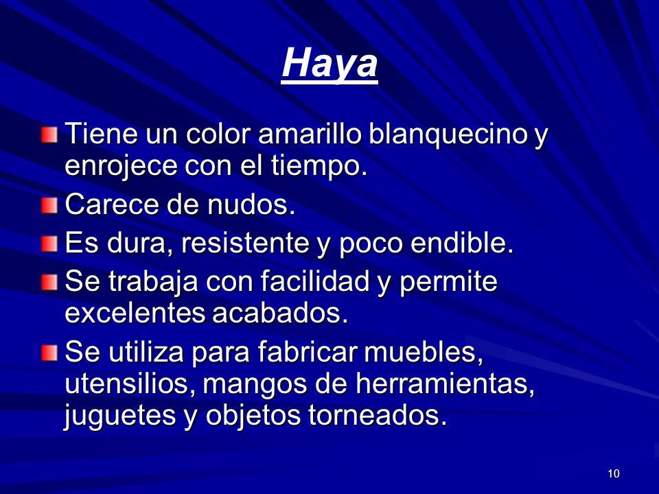 10 Haya Tiene un color amarillo blanquecino y enrojece con el tiempo. Carece de nudos. Es dura, resistente y poco endible. Se trabaja con facilidad y