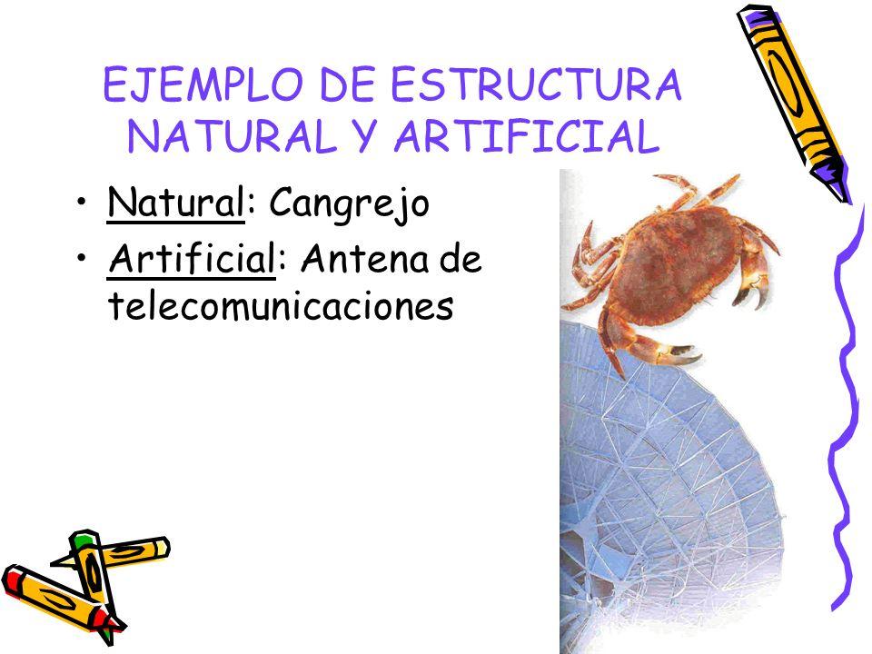 EJEMPLO DE ESTRUCTURA NATURAL Y ARTIFICIAL Natural: Cangrejo Artificial: Antena de telecomunicaciones