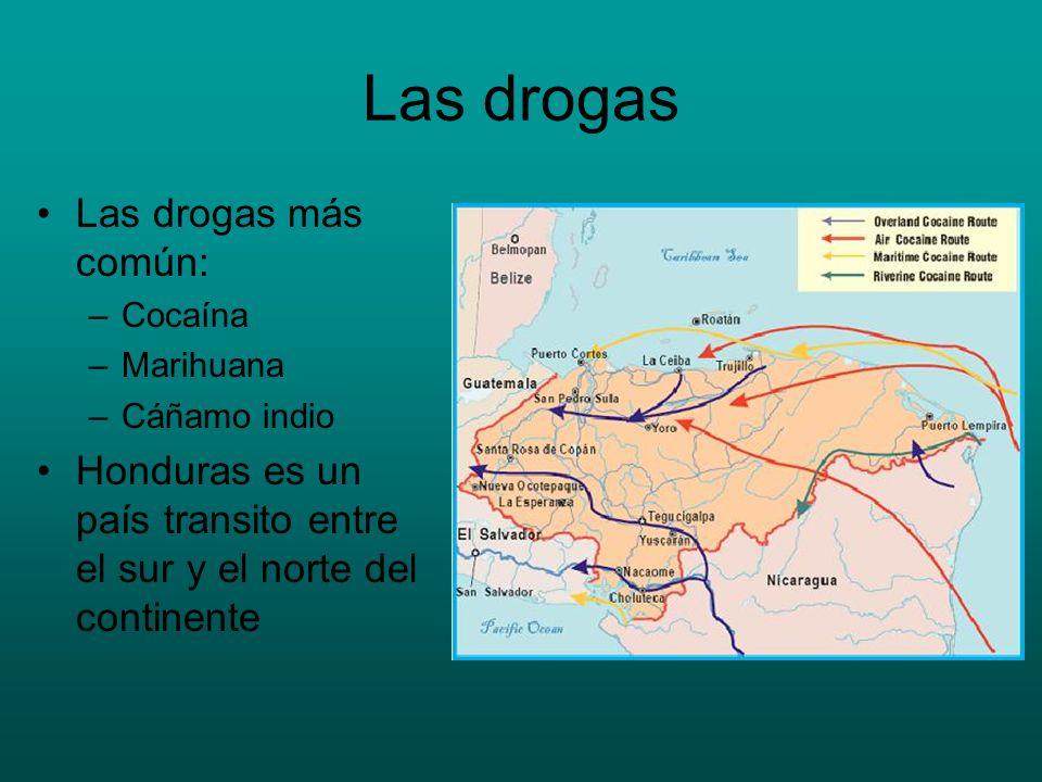 Las drogas Las drogas más común: –Cocaína –Marihuana –Cáñamo indio Honduras es un país transito entre el sur y el norte del continente