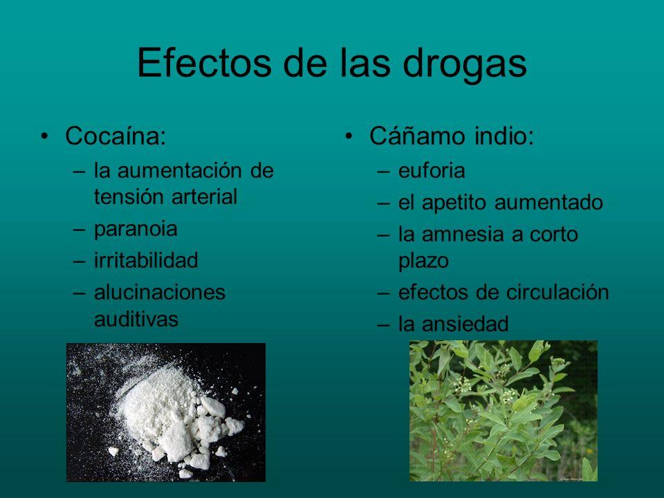Efectos de las drogas Cocaína: –la aumentación de tensión arterial –paranoia –irritabilidad –alucinaciones auditivas Cáñamo indio: –euforia –el apetit
