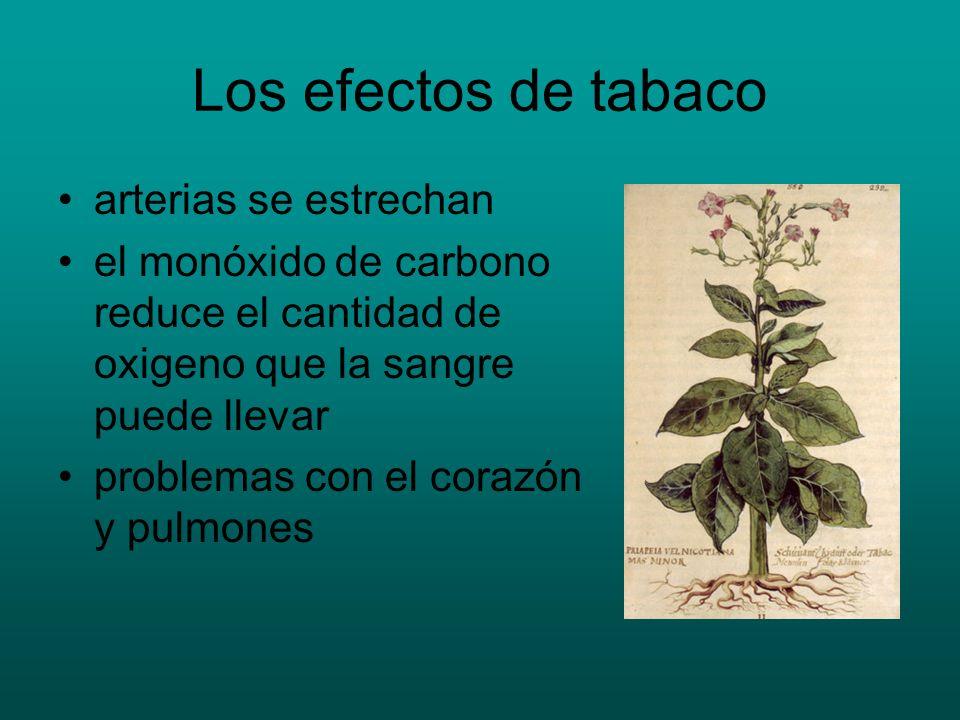 Los efectos de tabaco arterias se estrechan el monóxido de carbono reduce el cantidad de oxigeno que la sangre puede llevar problemas con el corazón y