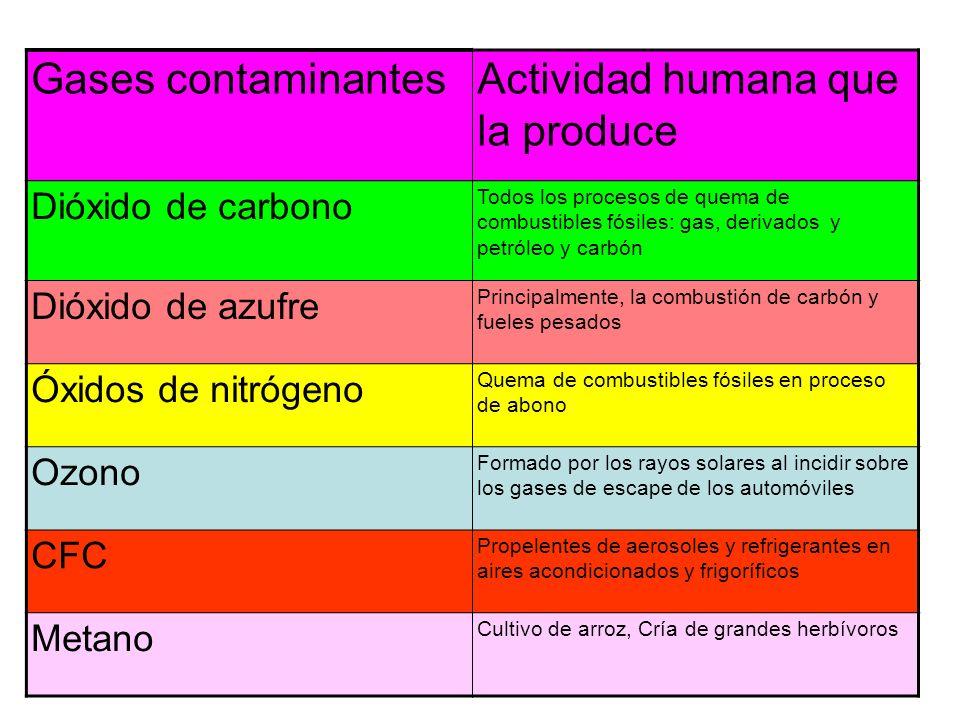 Gases contaminantesActividad humana que la produce Dióxido de carbono Todos los procesos de quema de combustibles fósiles: gas, derivados y petróleo y