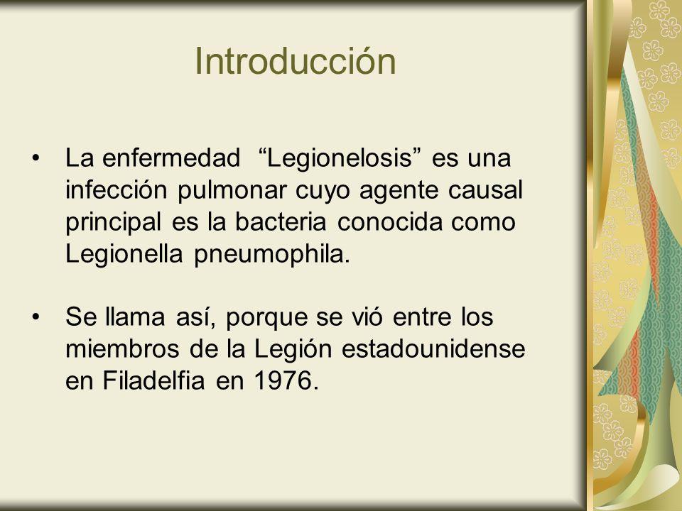 Introducción La enfermedad Legionelosis es una infección pulmonar cuyo agente causal principal es la bacteria conocida como Legionella pneumophila. Se