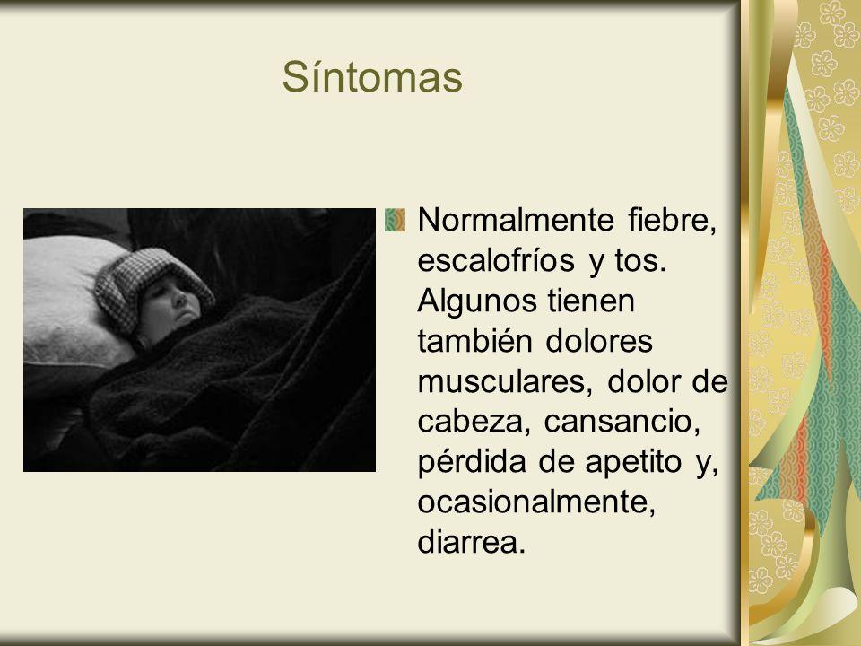 Síntomas Normalmente fiebre, escalofríos y tos. Algunos tienen también dolores musculares, dolor de cabeza, cansancio, pérdida de apetito y, ocasional