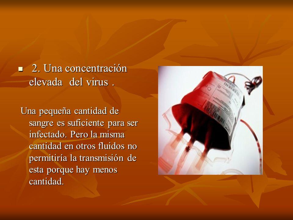 2. Una concentración elevada del virus. 2. Una concentración elevada del virus. Una pequeña cantidad de sangre es suficiente para ser infectado. Pero