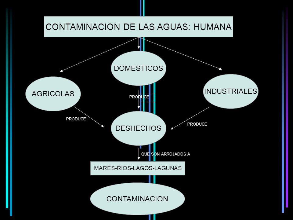 Ácido nítrico + Ácido sulfúrico Óxidos de nitrógeno y azufre Vapor ácueo + Lluvias ácidas