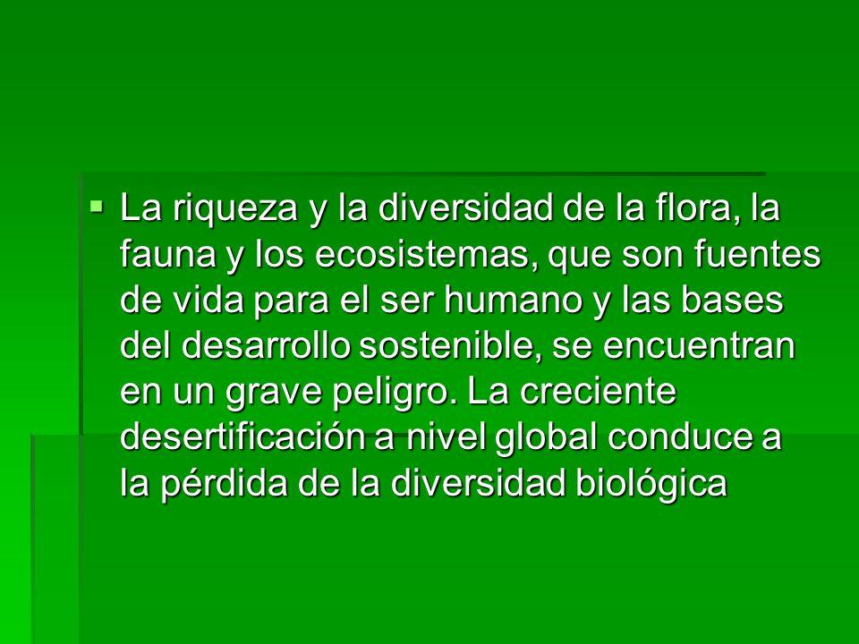 La riqueza y la diversidad de la flora, la fauna y los ecosistemas, que son fuentes de vida para el ser humano y las bases del desarrollo sostenible, se encuentran en un grave peligro.