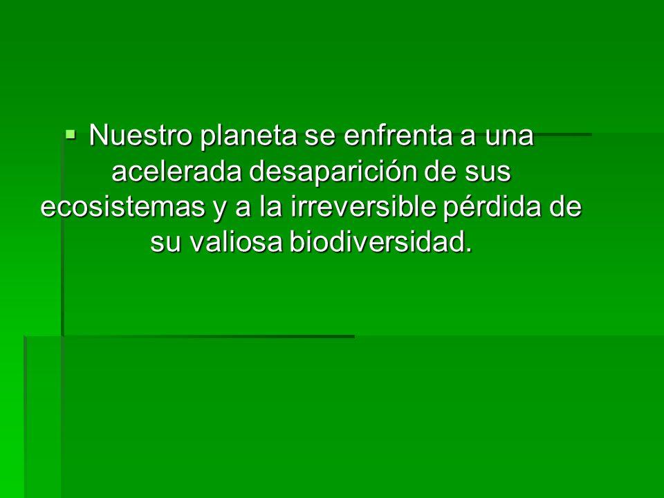 Nuestro planeta se enfrenta a una acelerada desaparición de sus ecosistemas y a la irreversible pérdida de su valiosa biodiversidad.