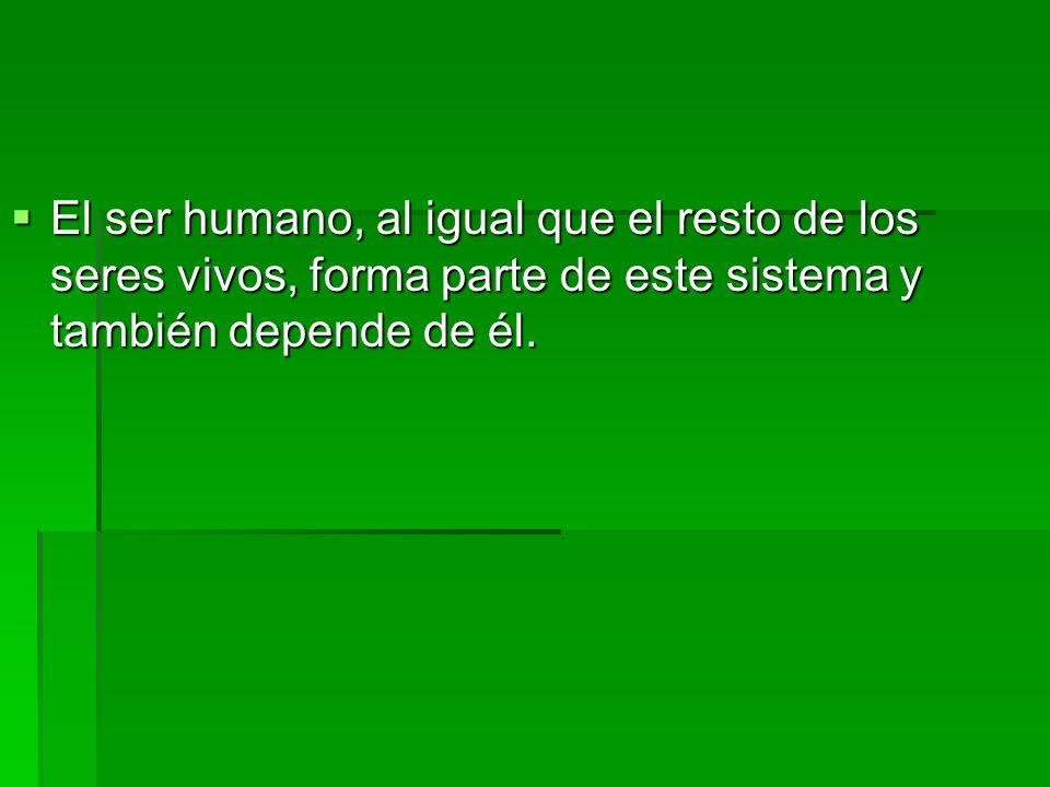 El ser humano, al igual que el resto de los seres vivos, forma parte de este sistema y también depende de él.