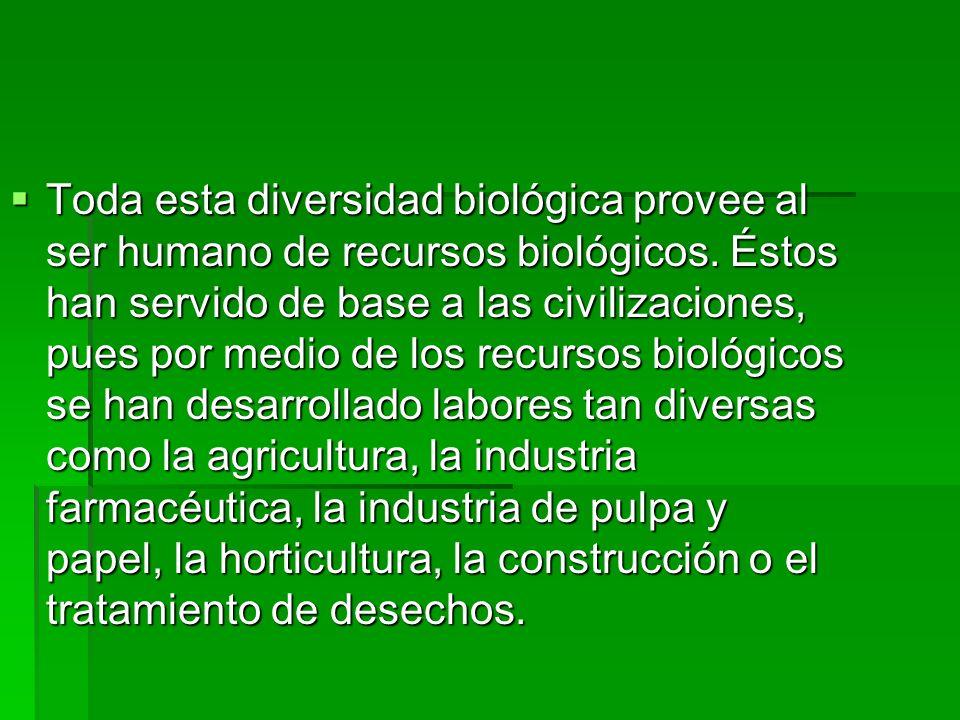 CONSECUENCIAS PARA LOS HUMANOS La pérdida de la diversidad biológica amenaza los suministros de alimentos, las posibilidades de recreo y turismo y las fuentes de madera, medicamentos y energía.